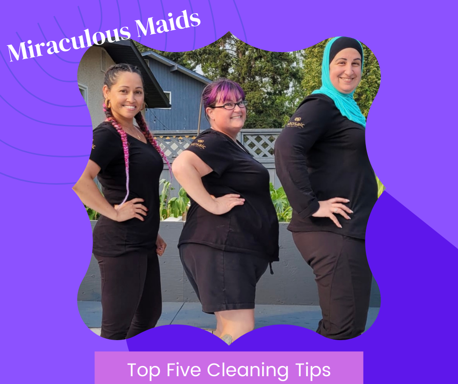 Miraculous Maids